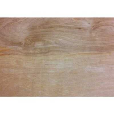 Universal Forest Products 3/8 In. x 24 In. x 24 In. Birch Plywood Panel