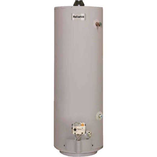 Reliance 30 Gal. Tall 6yr 30,000 BTU Mobile Home Direct Vent Natural Gas/Liquid Propane Water Heater